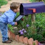 mailboxboy